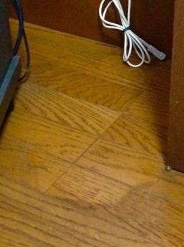 猫がいると家がきれいになる理由03.jpg