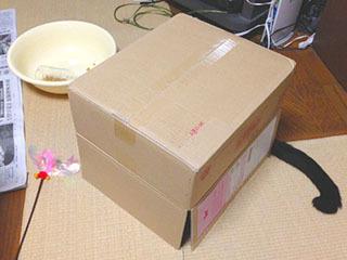箱5-1.jpg