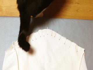 邪魔猫 袖付けにしっぽ-1.jpg
