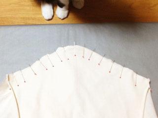 邪魔猫 袖付けに両手-1.jpg